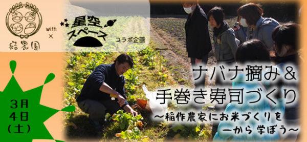 結農園x星空スペース ナバナ摘み&手巻き寿司 稲作農家にお米作りを一から学ぼう