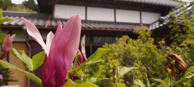 4/28(金)~5/1(月)今週のメニュー