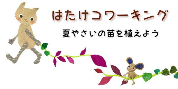 【5/20(土)】はたけコワーキング 夏やさいの苗を植えよう