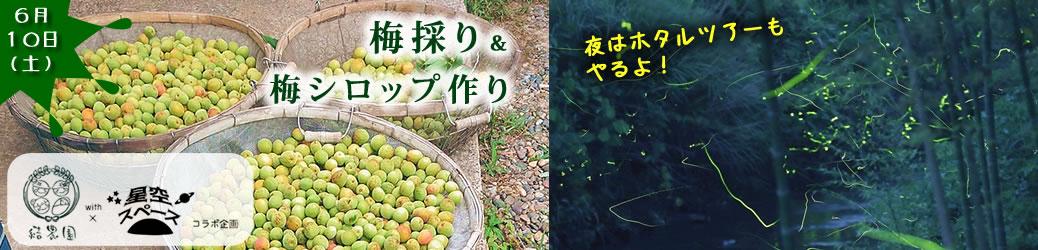 【6/10(土)】結農園x星空スペース 梅採り&梅シロップつくり しかも夜はホタルツアー
