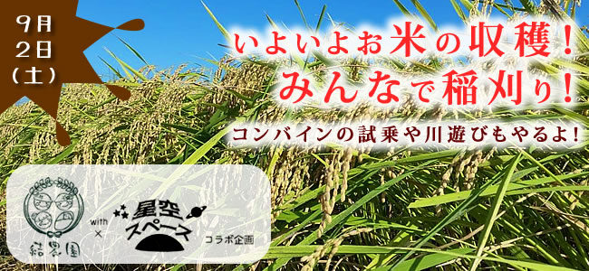 【9/2(土)】結農園x星空スペース いよいよお米の収穫!みんなで稲刈り!