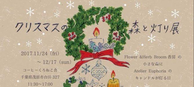 【11/24-12/17】クリスマスの森と灯り展@茂原市 コーヒーくろねこ舎