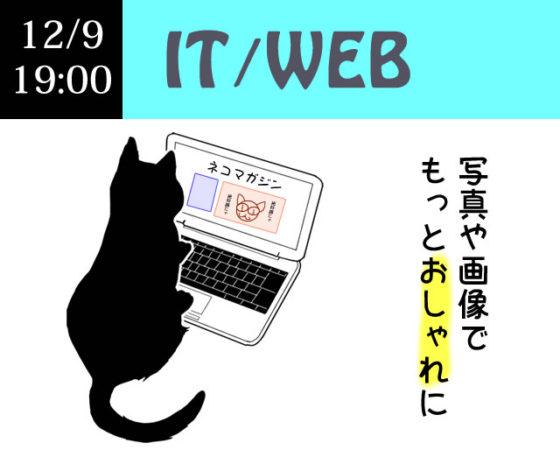 IT/WEB 画像・写真加工編集入門