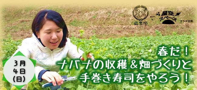 【3/4(日)】結農園x星空スペース 春だ!ナバナの収穫&畑づくりと手巻き寿司をやろう!