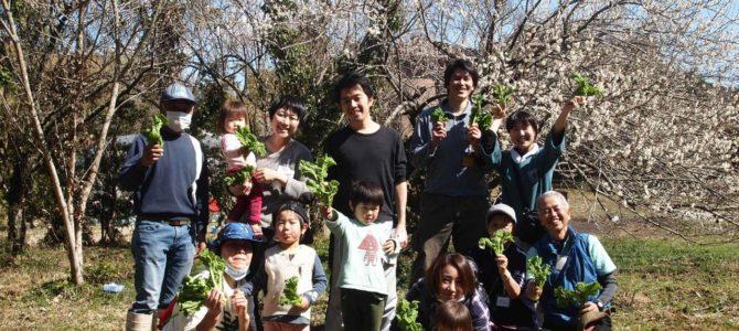 結農園×星空スペース 春だ!ナバナの収穫&畑づくりと手巻き寿司をやろう!開催しました。