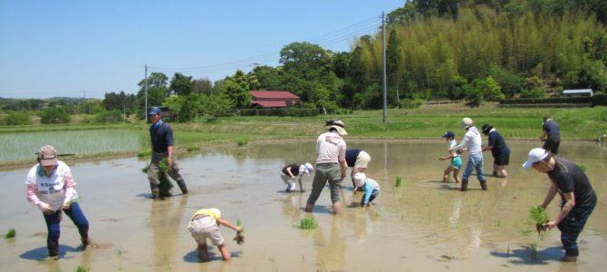 結農園x星空スペース いよいよ田植え&里山バーベキュー!第1弾 開催しました。※5/12(土)追加募集はじめました