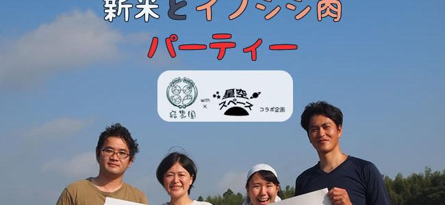 11/3(土)~11/6日(火)今週の営業&メニュー