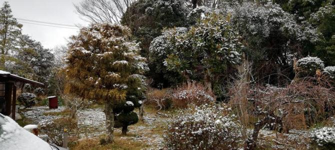 2月11日本日も降雪のため臨時休業