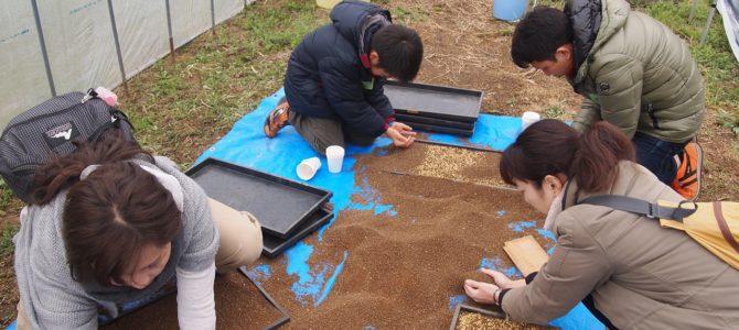 結農園x星空スペース お米の種をまこう&春の和菓子づくりWS 開催しました。